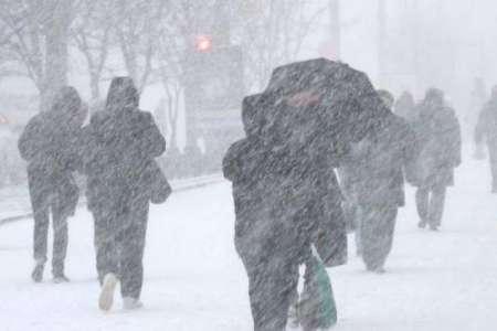 Синоптики предупредили жителей Москвы о трехдневной метели с 17 января