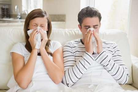 «Яндекс» назвал самые популярные средства от простуды