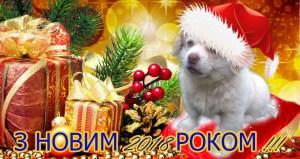 Андрій Матла привітав тернополян з новорічними святами