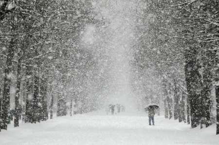 Синоптики сообщили, когда закончится снегопад в Москве