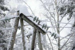 На Тернопільщині через снігопад без світла залишилося понад 40 сіл