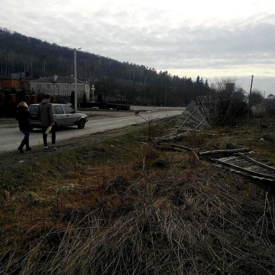 На Тернопільщині собаку рятували з каналізаційного люка (фото, відео)