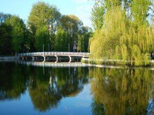 У Тернополі цьогоріч очищатимуть річку Серет