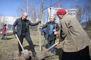 Тернопіль повертає собі статус «зеленої столиці» України