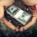 Фахівці назвали ринкову вартість сільськогосподарської землі