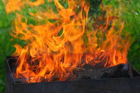 На время ЧМ-2018 в России запретят жарить шашлыки