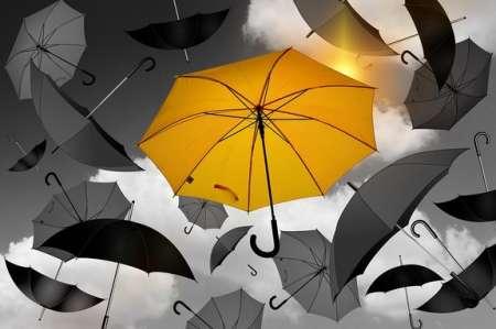 «Желтый» уровень погодной опасности введен в Москве на 4 июня из-за сильного ветра