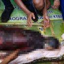 В Индонезии 8-метровый питон целиком проглотил 54-летнюю женщину