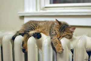 22 жовтня у Тернополі планують розпочати опалювальний сезон