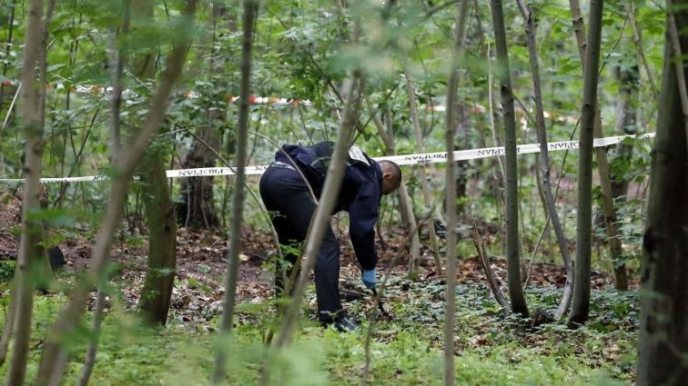 На Тернопільщині у лісі знайшли два тіла: мама і сина