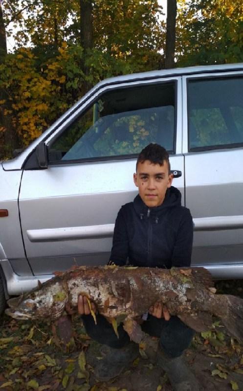 На Тернопільщині хлопчик упіймав гігантську щуку (ФОТО)