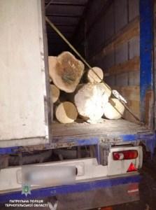 У об'їзній Тернополя затримали фуру з деревиною без документів