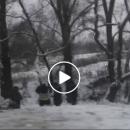 На Тернопільщині біля річки автомобіль перекинувся у кювет (ВІДЕО)