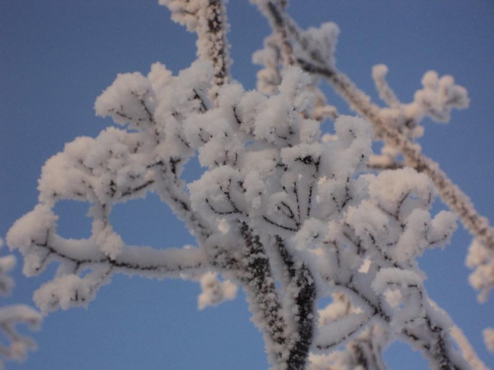 На Тернопільщині похолодає, а потім знову потепліє