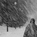Погода на Тернопільщині: снігопади і штормовий вітер