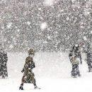 На Тернопільщині далі передбачають снігопади