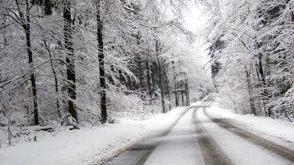 На Тернопільщині трішки потепліє, але дошкулятиме сильний вітер та ожеледиця