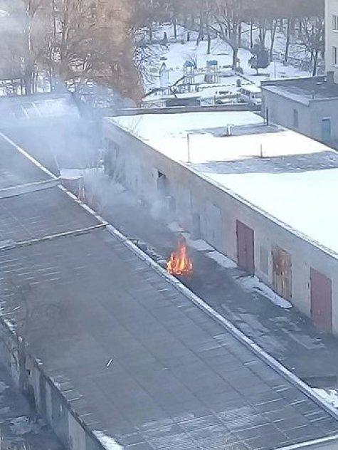 Порушення у Тернополі: люди спалюють ялинки прямо біля будинків (ФОТО)