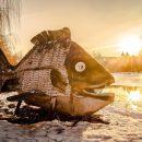 У Тернополі є єдиний у світі пам'ятник рибі, яка першою зійшла на берег (ФОТО)