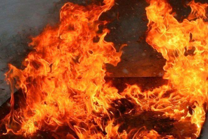 Пожежа на Тернопільщині: на місці виявили тіла тварин