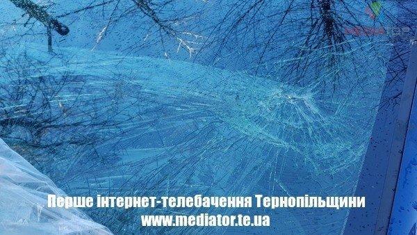 У Тернополі дерево впало і побило автомобіль (ФОТО)