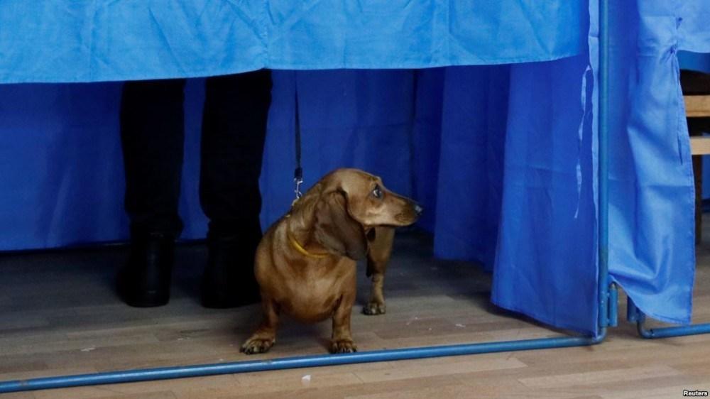 Вибори президента: як голосували відомі тернополяни (ФОТО)
