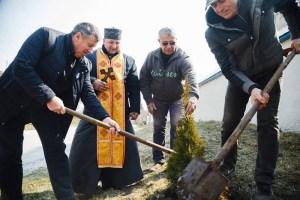 На Тернопільщині посадили алею миру