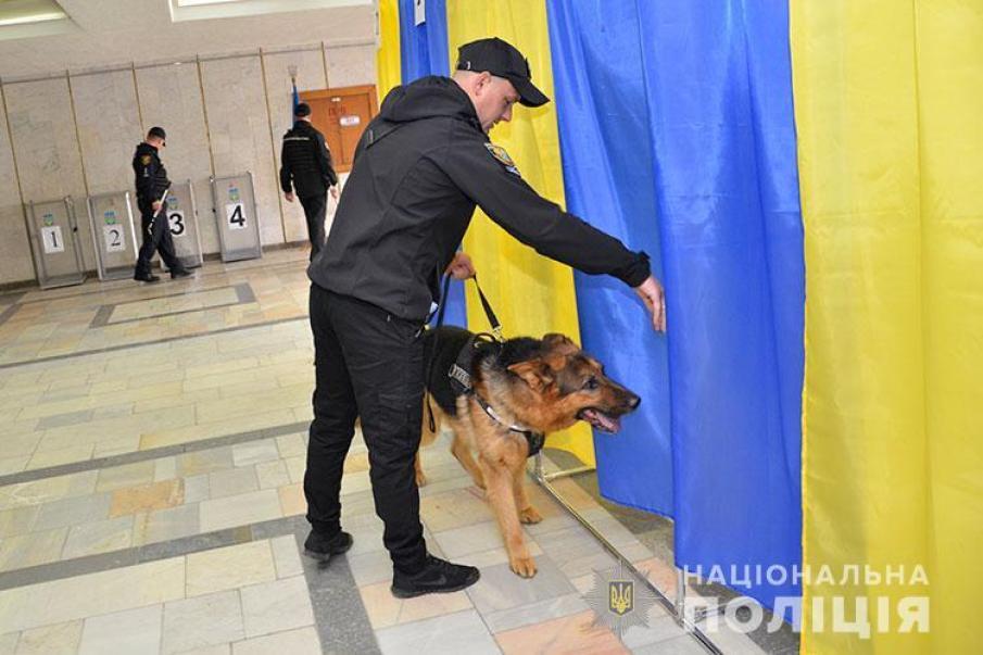 """У Тернополі """"копи"""" із собаками обстежували всі виборчі дільниці (фото, відео)"""