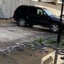 """""""Головне – втиснути свого ґрата"""": в Тернополі на площі Героїв Євромайдану водії понищили газони (ФОТО)"""