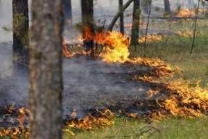 Після злив на Тернопільщині очікують спеку і пожежі