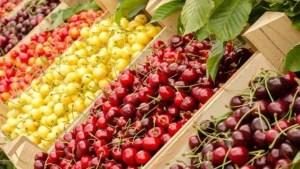 Через дощову весну на Тернопільщині утримуються високі ціни на фрукти і ягоди