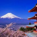 Тернополянка вивезла дитину до Японії без згоди батька