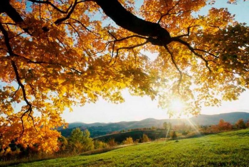 Коли на Тернопільщину повернеться приємне осіннє тепло