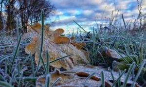 Сильний вітер та перші заморозки: тернополян попереджають різке погіршення погодних умов