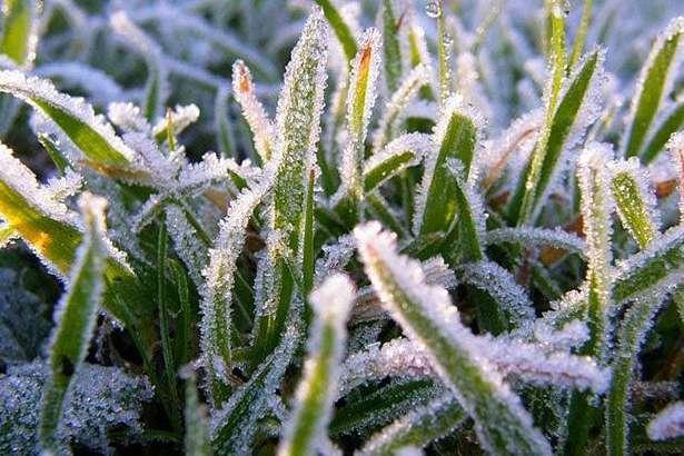 В Україну йде похолодання: сильні заморозки, грози та рясні дощі