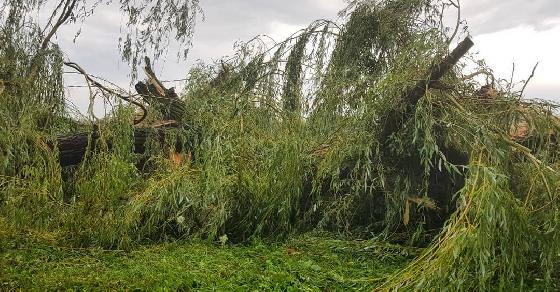 Негода наробила біди у п'яти областях України