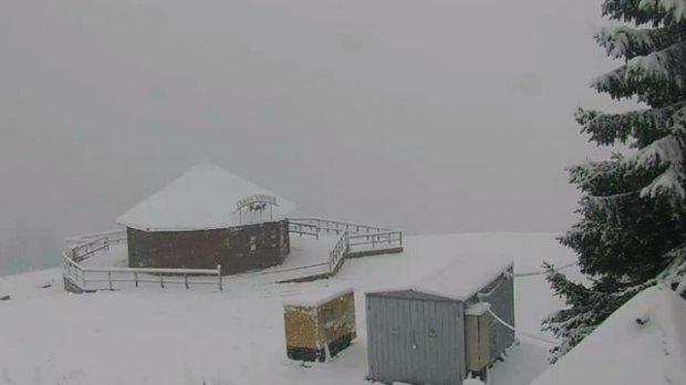 Карпати засипало снігом (ФОТО, ВІДЕО)
