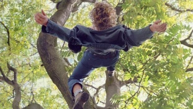 У Тернополі дитина впала з дерева і напоролася на металевий прут