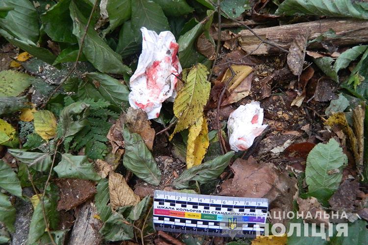 На Тернопільщині під час раптового пориву вітру дерево тяжко травмувало чоловіка (ФОТО)