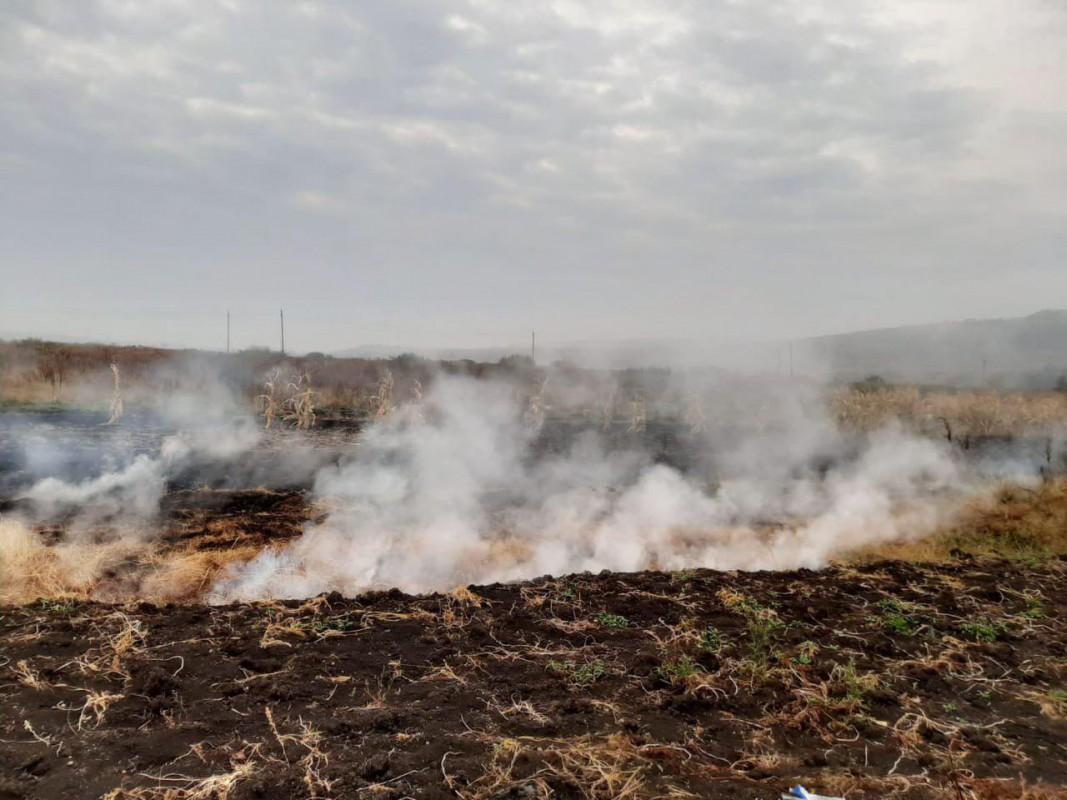 На Тернопільщині на великій площі горіли поклади торфу (ФОТО)