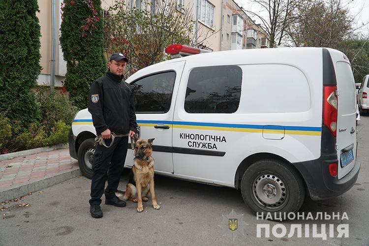 У Тернополі злочинці побили вікна та погрожували зброєю жінці (ФОТО)