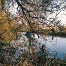На Тернопільщині у річці знайшли тіло жінки, яку розшукували (ФОТО)