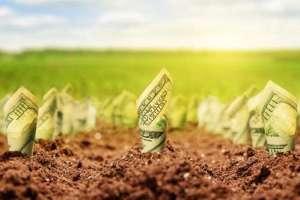 Радник Гончарука спрогнозував ціну 1 гектара після відкриття ринку