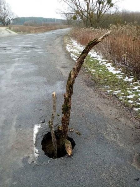 Посеред дороги на Тернопільщині утворилося провалля (ФОТО)