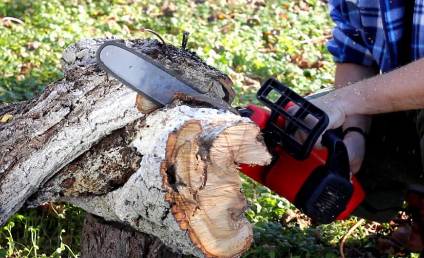 На Тернопільщині під час заготівлі деревини частина колоди відскочила і забила чоловіка