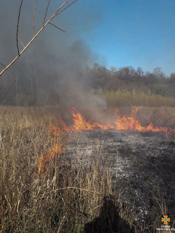 На Тернопільщині 4 години гасили пожежу: горіла суха трава (ФОТО)