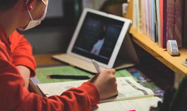 Головна освітянка Тернопільщини каже, що скидати дітям домашнє у Вайбер – це не дистанційна освіта, мають бути відеоуроки