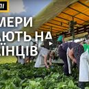 """""""Якщо українці не повернуться – це буде катастрофа для нас"""": у Чехії б'ють на сполох через карантин (ВІДЕО)"""