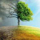 Глобальне потепління в Україні: метеорологи показали, де в Україні стало жаркіше