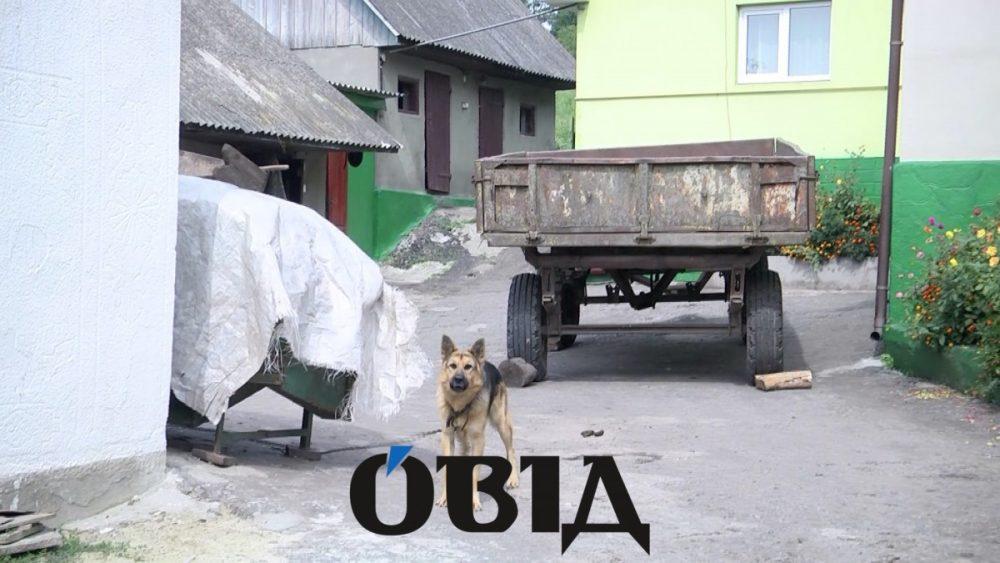 """""""Голову дві доби шукали"""": моторошні подробиці трагедії на Тернопільщині (ФОТО)"""